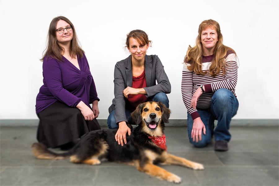 Karoline Paschos, Bettina Hartl und Sabine Eigelsreiter (v. l. n. r.) bringen ihre eigenen höchst unterschiedlichen Berufserfahrungen als Tierärztinnen bei der Plattform für junge Tierärzte ein. Foto: Nurith Wagner-Strauss